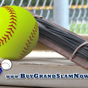 softball grand slam ball retrieval system, little league t ball softball baseball hardball baseball training aids baseball hitting devices